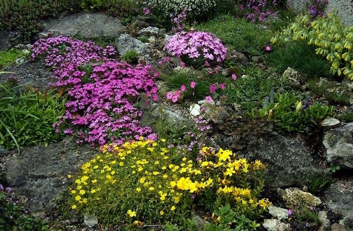 Горке навредить может дождь, потому что воду не впитывают камни, а только по миниатюрным земляным канавка направляют ее вниз
