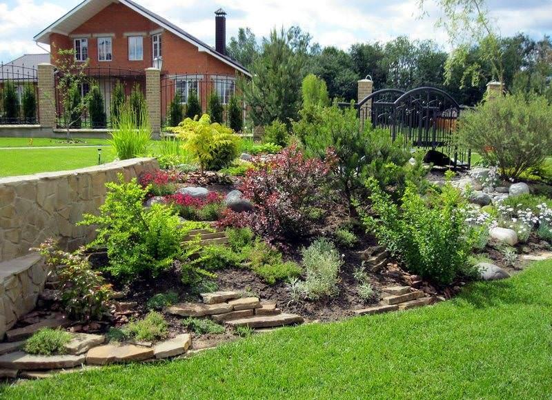 Что же касается выпревания, то с ним чаще всего сталкиваются переусердствовавшие с заботой садоводы