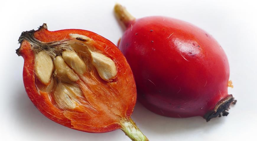 Чаще всего семенами размножают розу только селекционеры, желая вывести новый гибрид либо сорт. Семенами можно размножить только растение, растущее в диких условиях, но при этом следует учесть, что не все из известных видов смогут дать семена способные взойти.