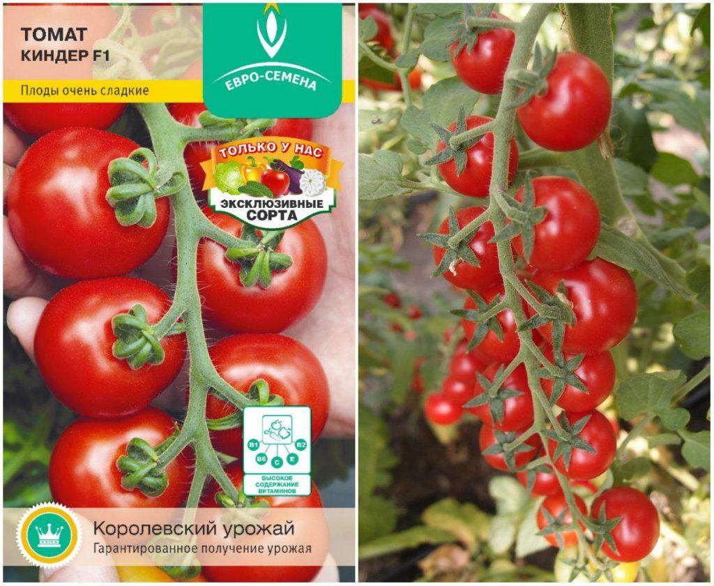 Ценителям томатов, растущих гроздью, придётся по вкусу Киндер F1, в кисточках которого от 12 до 18 некрупных, 20-30г, ярких алых плодов. Сорт характеризует приятный насыщенный сладкий вкус и плотный «помидорный» аромат.