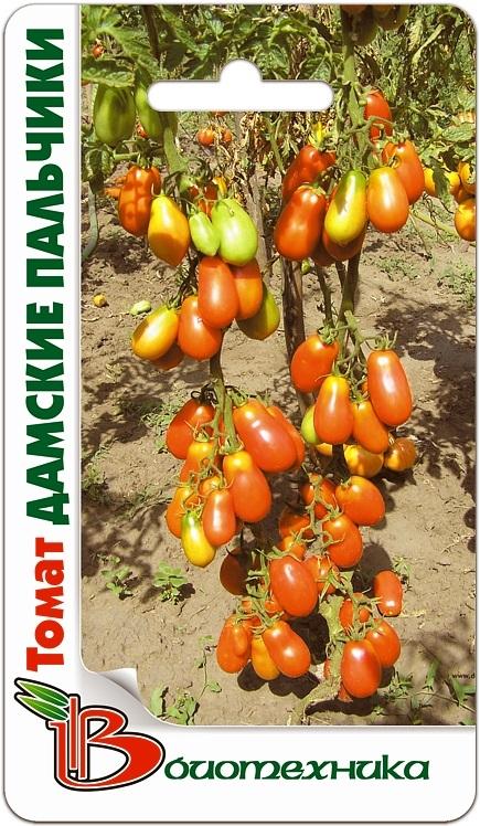 Крупные томаты, которые хорошо хранятся, но не требуют особых усилий? Сорт «Дамские пальчики» – в теплице может дать до 15 кг плодов весом 140 г, лежких, устойчивых к перевозке.